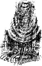 Comizio-torre